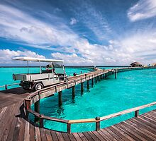 Baggy on the Jetty over the Blue Lagoon by JennyRainbow
