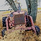 Out to Pasture by Leann  Rardin