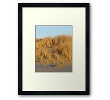 Washington Beach Sand Dune Framed Print