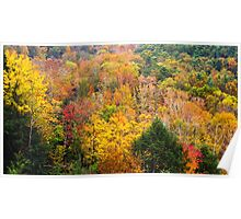 Mohican Autumn Poster