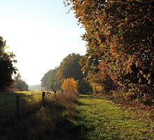 Autumn #1 by Angrahius