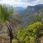 Bluff, Borders National Park by Dean Bailey