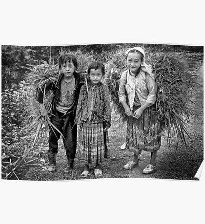Children of Ma Li Peng, Vn... Poster