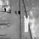 Hung out to Dry by Photo-Bob