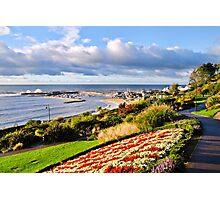 Langmoor-Lister Garden Overview Photographic Print