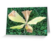 Beautiful chestnut leaf Greeting Card