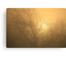 Sigh For a March Morn Canvas Print