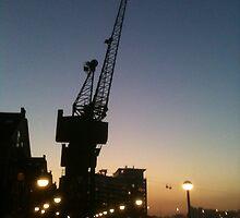 Victoria Dock Crane at Night by Pontvert