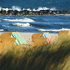 Beach Day in Autumn by karina5
