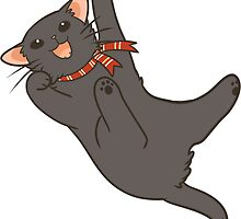 Black Cat by pawlove