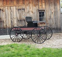 The Old Homestead's Transportation by ArtBee