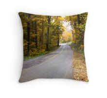 GUTFORD ROAD IN CLARKSVILLE, INDIANA Throw Pillow