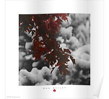 Red, Black & Snow Poster
