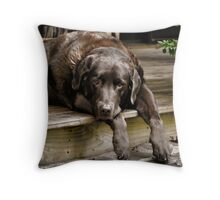 Paws off the Porch Throw Pillow