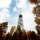 a tower in the forest by kavolis
