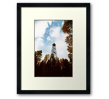 a tower in the forest Framed Print