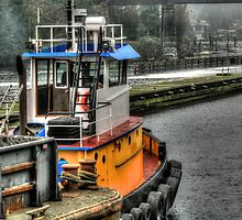 Tug Through the Locks by Sue Morgan