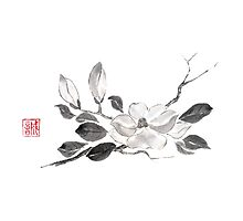 White queen sumi-e painting Photographic Print