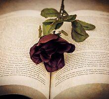 *Surrexerunt Liber (textured) by GoldenRectangle
