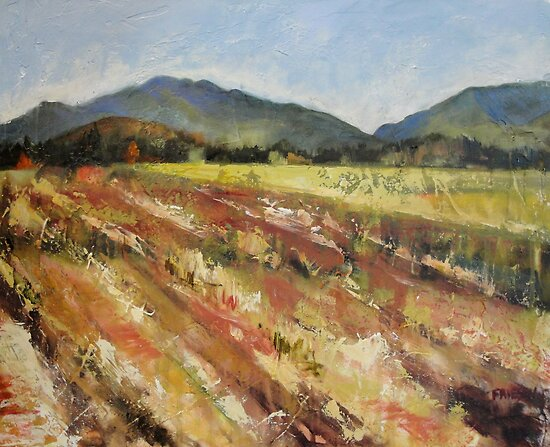 Fields and Hills by Holly Friesen