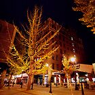 Asheville on a November Night by James Hoffman