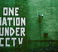 ONE NATION UNDER CCTV by BanksyOfficial