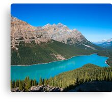 Lake Peyto Canvas Print