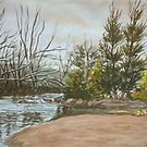 Winter morning on the Fish River by Virginia  Coghill