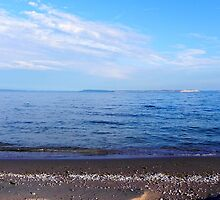 View of the Sleeping Bear Dunes National Lakeshore by Atheum