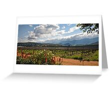 Ashton vineyards Greeting Card