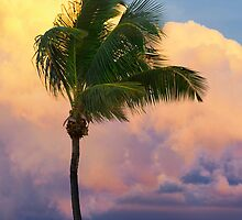 Tropical Sunset by DDMITR