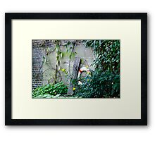 Canal side Framed Print