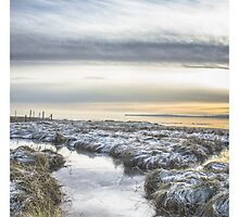 Frosty Morn by stevemac66