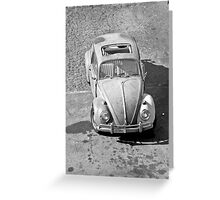 Camouflage Beetle Greeting Card