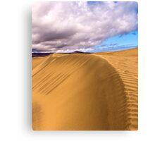 Sand & Sky Canvas Print