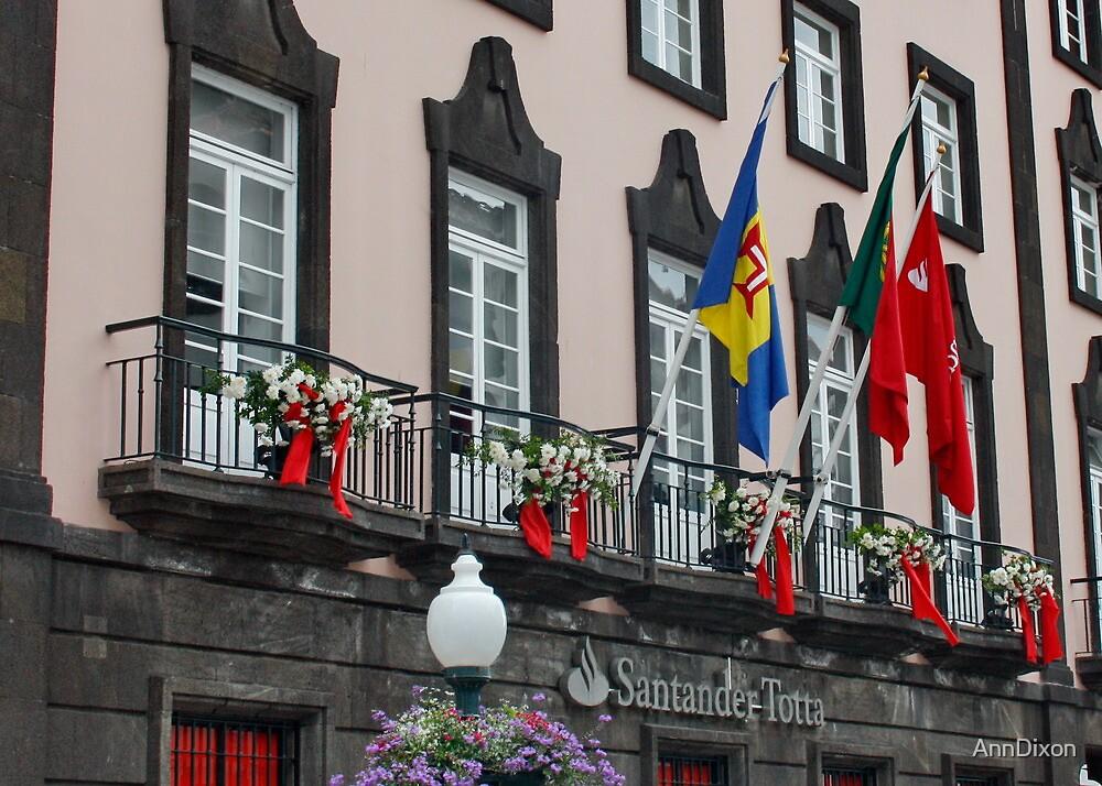 Madeira Balcony by AnnDixon