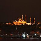 Istanbul At dawn by Nancy Richard