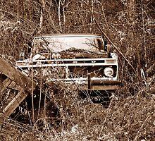 Built Ford Retired by Paul Lubaczewski