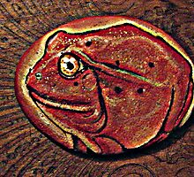 tomato frog by Kaye Bel -Cher