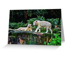 White Tigers Greeting Card