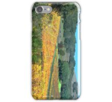 Winescapes of California Part II iPhone Case/Skin