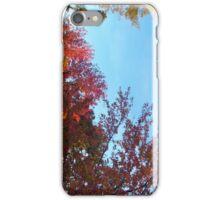 Saratoga in Fall I iPhone Case/Skin
