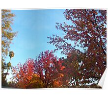 Saratoga in Fall I Poster