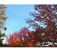 Saratoga in Fall I Photographic Print