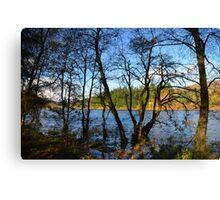 Loch Ard in Autumn Canvas Print