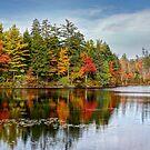 Fall at Mount Uniacke by Amanda White