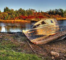 Fall Iight on Old Bones by Amanda White