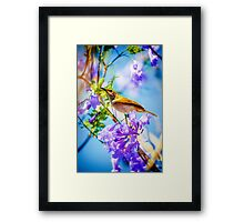 Springs End... Framed Print
