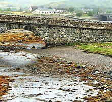 The Causeway to Eilean Donan by hans p olsen