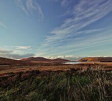 The Lake View by Chris Hood